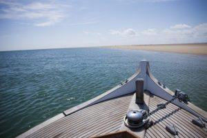 lateste_arguin - Bassin d'arcachon