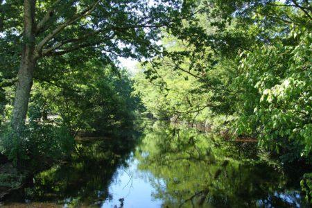 Canal des Landes au Bassin d'Arcachon