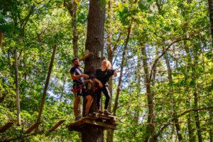 parcours dans les arbres mios